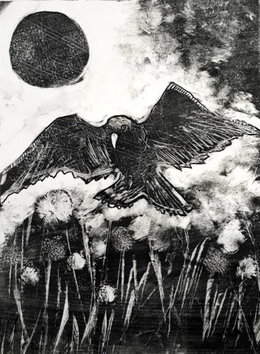Crow in Field